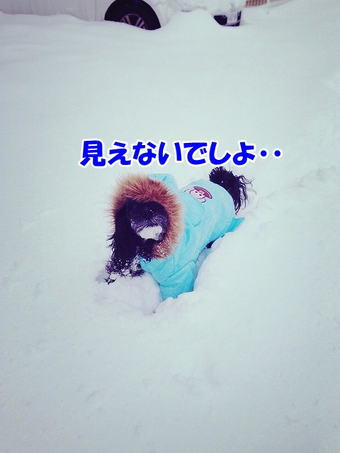 Img_1603_2